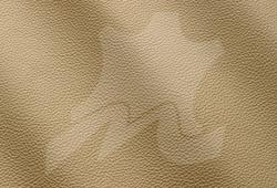 Deserto 9005.png