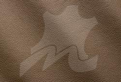 Fango 9013.png