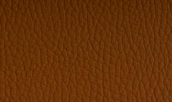 piele ecologica tip mercedes