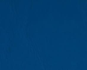 Piele ecologica albastra.png