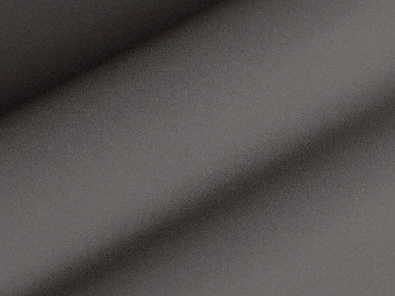 2596-PORPOISE