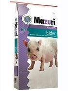 Mazuri-Mini-Pig-Elder.jpg