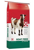 Products_Goat_All-Life-Stages.png