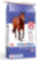 Product_Horse_Strategy_Healthy_Edge_2019