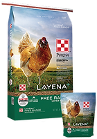Products_Flock_Purina-Layena-Free-Range-