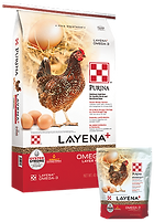Products_Flock_Purina-Layena-Omega3-Laye