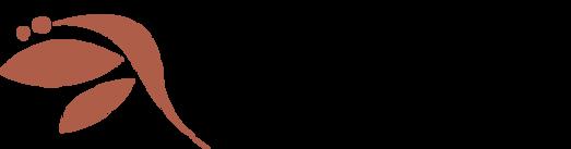 vitam logo v1.png