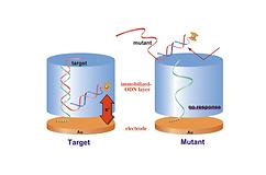 gene sensor 2.png