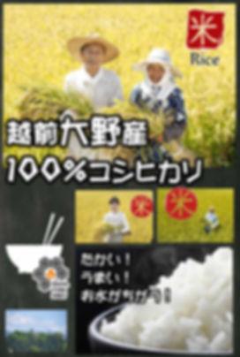 201905食方11.jpg