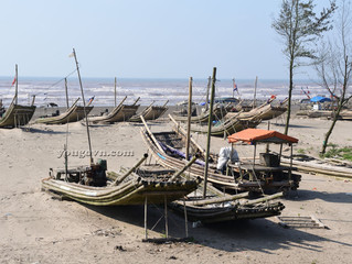 Nam Định: Bên bờ đê biển