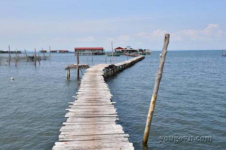 Rạch Vẹm - Vương quốc sao biển