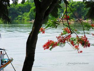 Xuôi dòng Sông Hương