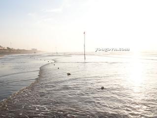 Bình minh biển Thịnh Long