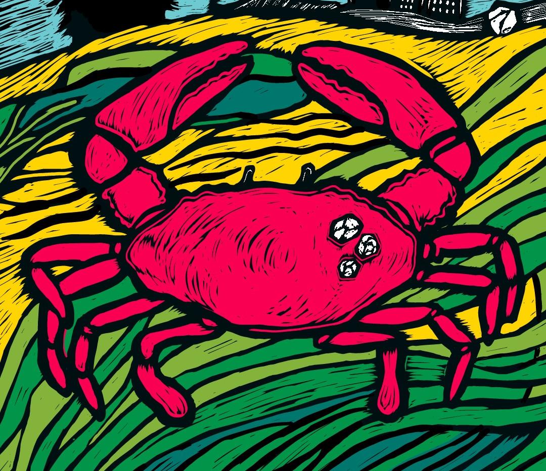 Crab-Short Banner