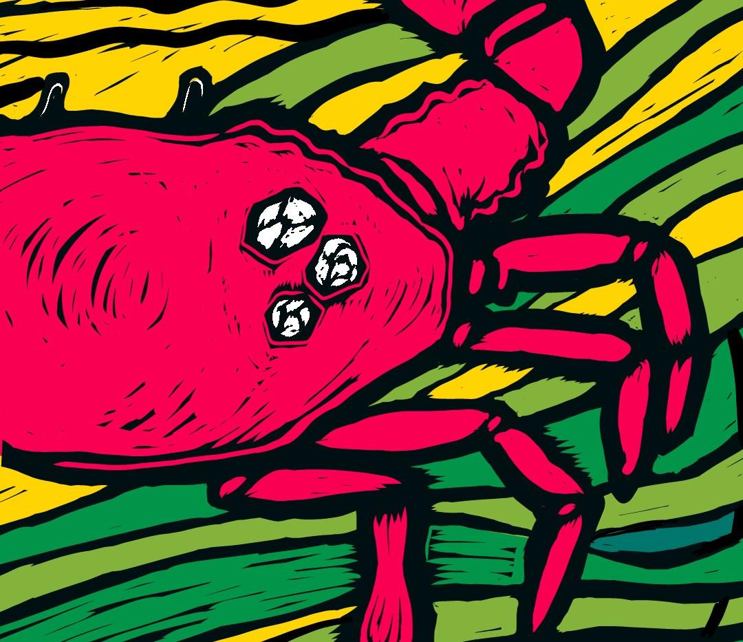 Crab-Tall Banner Design