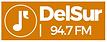 RADIO DELSUR.png