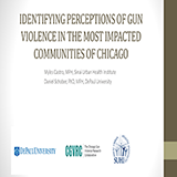 32. Identifying perceptions of gun viole