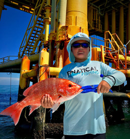 gulf of mexico red snapper fishing