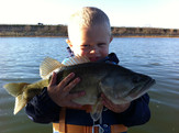 bass fishing rayburn