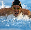 swimmer_butterfly_water_pool_competition