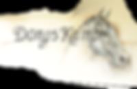 Logo Dongs Kamp vzw