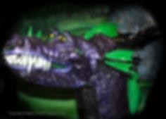 PurpleDragon.jpg