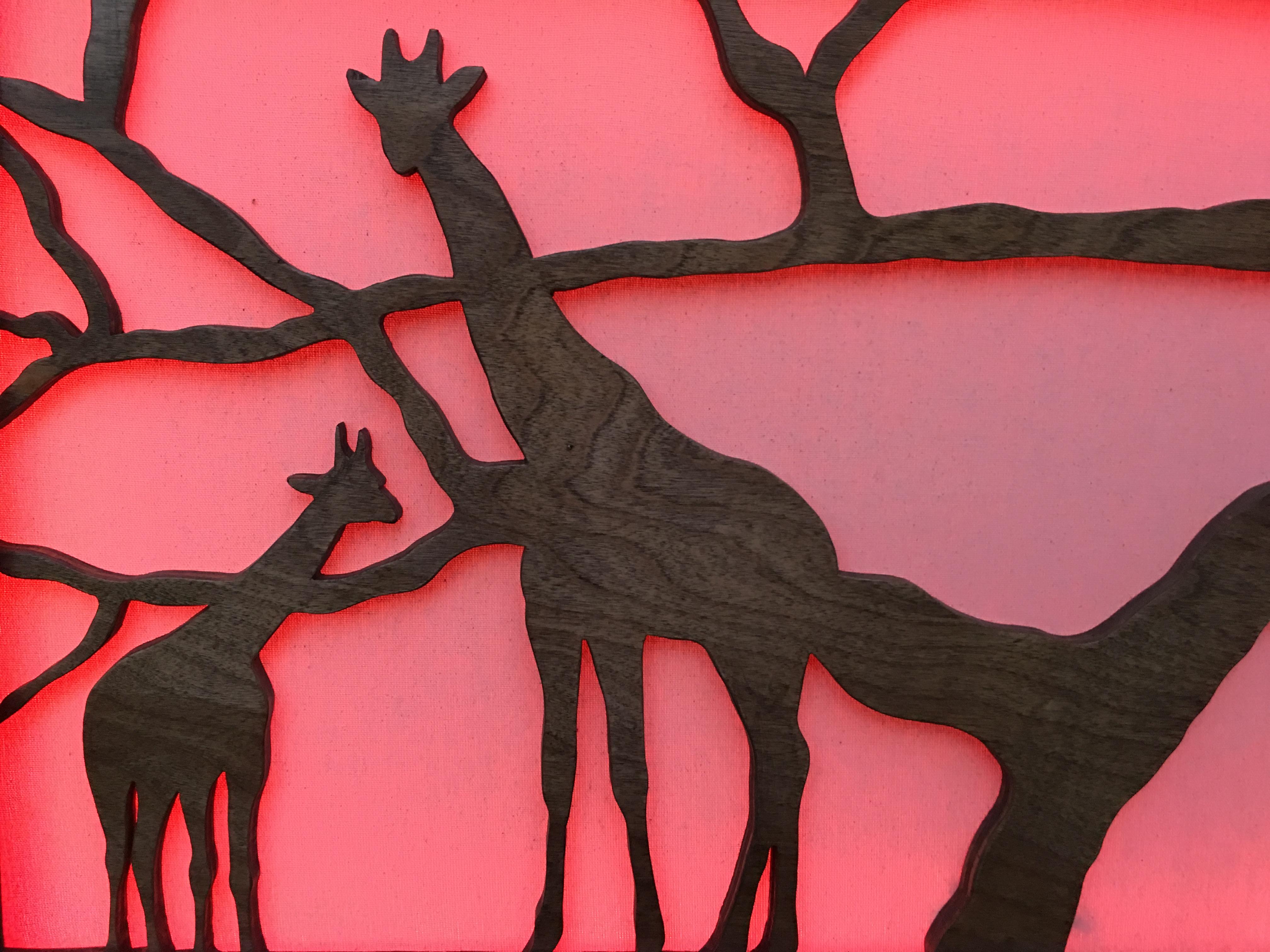 Closeup of Giraffes at sundown