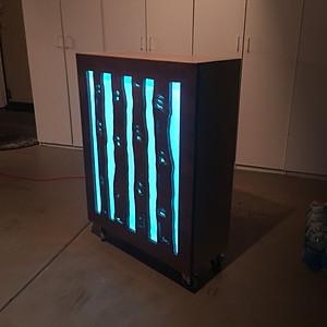 Illuminated Rolling Bookcase
