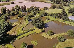 Lakes_drone_view - 1.jpg