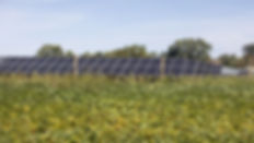 farm solar.jpg