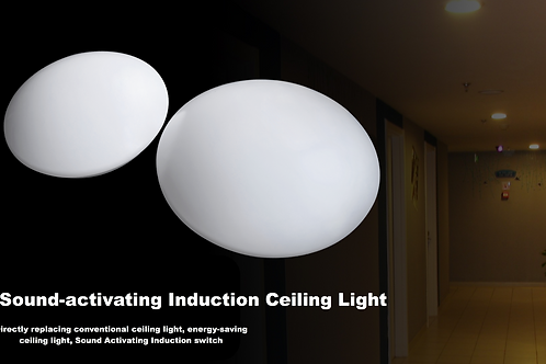 LED Sound-activating Induction Ceiling Light