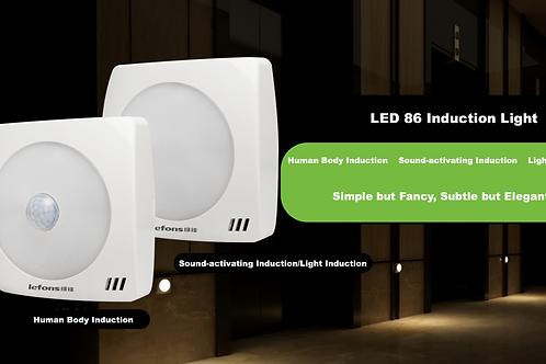 LED 86 Induction Light