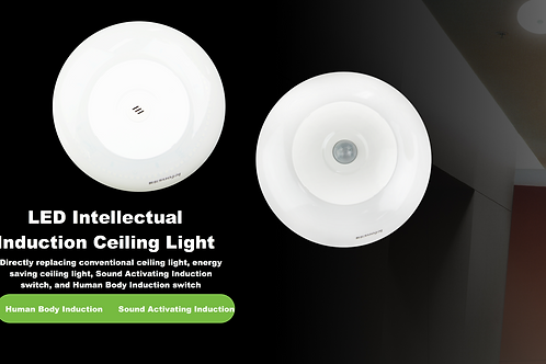 LED Intellectual Induction Ceiling Light