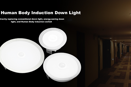 LED Human Body Induction Down Light
