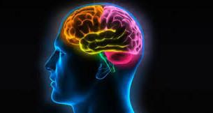 Neurolinguística... neuroquê???