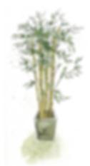 bambou.png