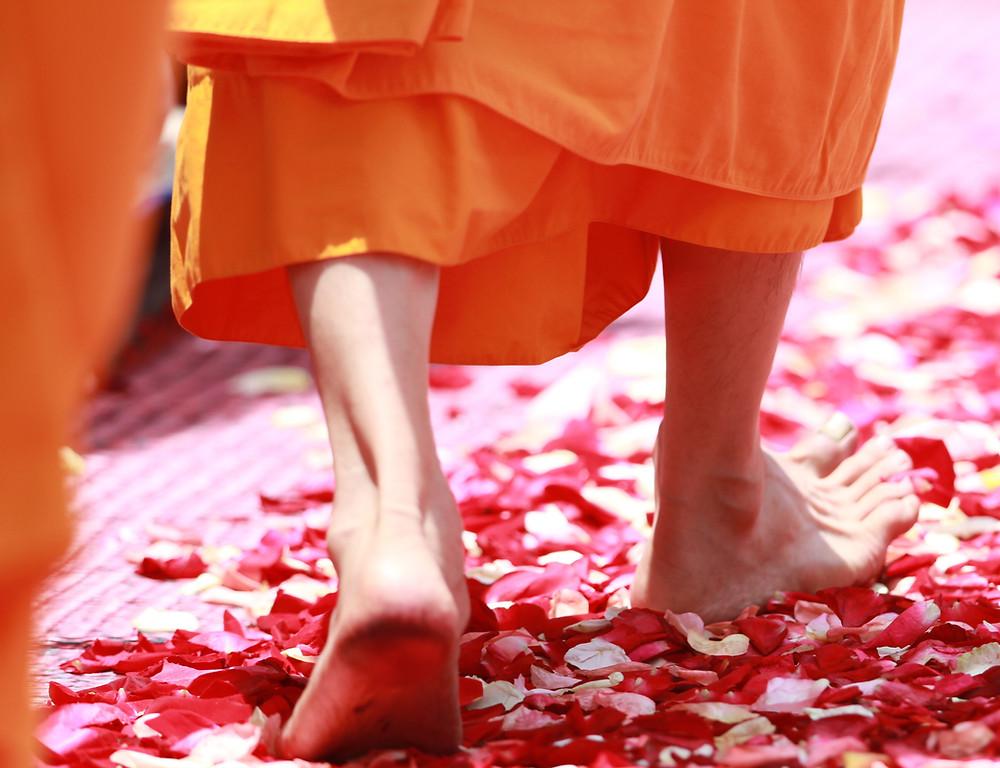 Buddha walking on rose petals