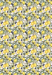 oliven&zitrone_.jpg