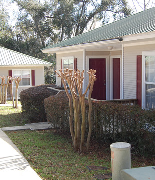 Tallahassee cottages student housing.JPG