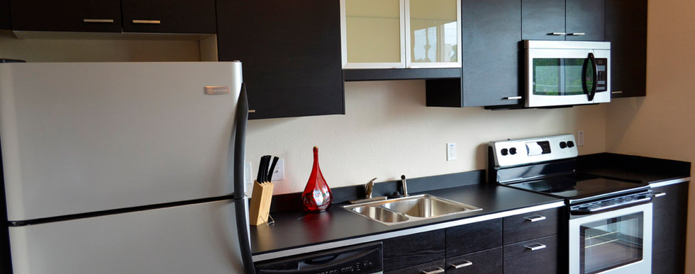 The Lofts on Gaines kitchen.jpg