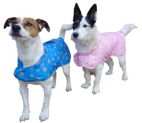 MacPAWS - Pack - a - Mac Rain coat