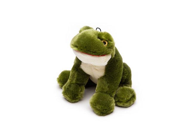 Henry Frog