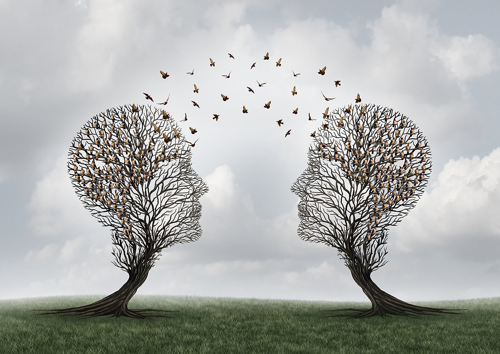 OutspokenGraphic Two trees facing each other in the form of a human profile with birds flying between them