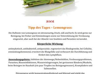 Tipp des Tages - Lemongrass