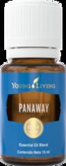 Panaway.png