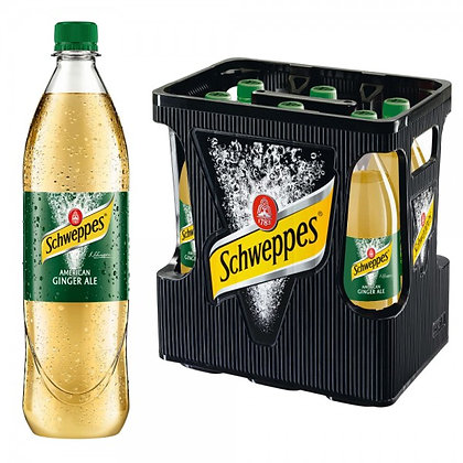 Schweppes American-Ginger-Ale PET 06x1,00L