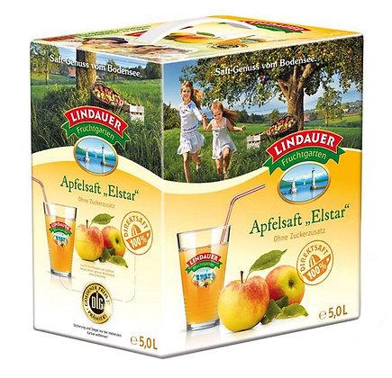 Lindauer Apfel-Direkt Elstar Bag-in-Box 01x5,00L