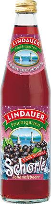Lindauer Johannisbeer-Schorle 10x0,50L
