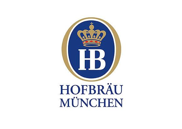 Hofbrau WB-Alk-Frei Glas 20x0,50L