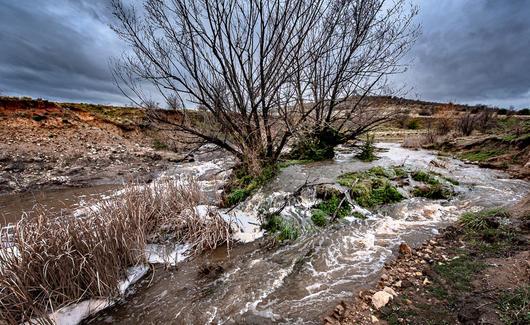 Jerrabomberra Creek, 2020, Tony McCormack